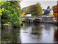 G9278 : River Eske, Donegal Town by David Dixon