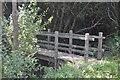 SX0349 : Footbridge, South West Coast Path by N Chadwick