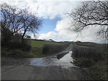 SX7283 : Flooded road to Canna Park by David Smith