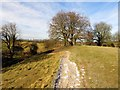 SU1069 : On top of the earthwork at Avebury by Steve Daniels