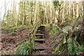 NX0881 : Steps on the Ballantrae Trail by Billy McCrorie