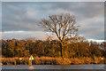 TG3116 : Wroxham Broad by Ian Capper