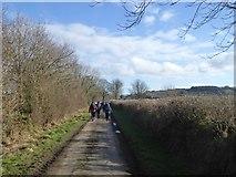 SX7583 : Walking to Barnecourt by David Smith