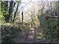 SX7582 : Track south towards Foxworthy  by David Smith