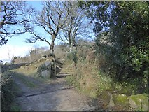 SX7582 : Field access and footpath gate at Foxworthy by David Smith