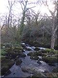 SX7582 : River Bovey at Foxworthy Bridge by David Smith