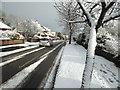 H4772 : Snow, Knockgreenan Drive / Georgian Villas by Kenneth  Allen
