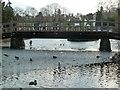 SO7745 : Bridge in Priory Park, Great Malvern by Chris Allen