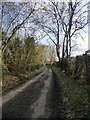 TQ2256 : Ebbisham Lane: view south from the entrance to Downs View Farm by Stefan Czapski
