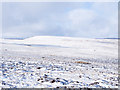 NY9642 : Snow on slope north of Long Hill by Trevor Littlewood