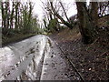 SJ2961 : Wet and muddy pavement alongside the A5104 west of Penyffordd, Flintshire by Jaggery