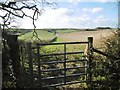 SY8095 : Tolpuddle, gate by Mike Faherty