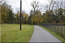 TL5150 : Footpath, Babraham Park by N Chadwick