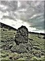 NS2153 : Standing Stone - Fairlie by Raibeart MacAoidh