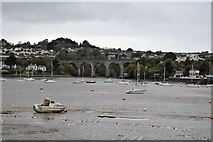 SX4258 : Coombe by Saltash Viaduct by N Chadwick