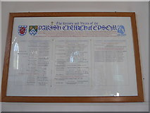 TQ2160 : Inside St Martin of Tours Epsom (1) by Basher Eyre