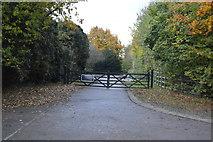 TL5251 : Roman Road byway by N Chadwick