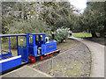 SK0573 : Miniature railway - Buxton Pavilion Gardens by Stephen McKay