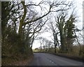 SS6835 : A399 bend in woodland north of Brayford by David Smith