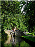 SO8275 : Canal approaching Caldwall Lock, Kidderminster, Worcestershire by Roger  Kidd