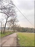 TQ1957 : Shepherd's Walk near Ermyn Lodge Stud by Stefan Czapski