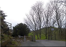 SS7049 : Cattle grid on the west edge of the Valley of the Rocks by David Smith