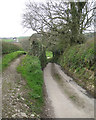 SX8150 : Lane to Blackawton from Cotterbury Cross, and a field access by Robin Stott