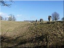 SU1070 : Avebury henge [4] by Michael Dibb