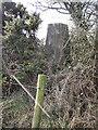 S4257 : Trig Pillar by kevin higgins