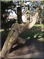 ST5975 : Elephant, St Andrew's Park, Bristol by Derek Harper