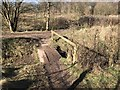 SJ7948 : Footbridge over ditch at Bateswood Country Park by Jonathan Hutchins