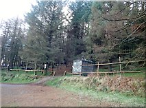 J1812 : Carlingford Adventure Assault Course in Slieve Foye Forest by Eric Jones