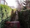 SJ2961 : Footpath between hedges, Penyffordd, Flintshire by Jaggery