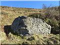 SJ1656 : 'Great Stone' boundary stone below Garreg Lwyd by John S Turner