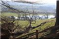 SN6122 : Lake, Dinefwr Park by M J Roscoe