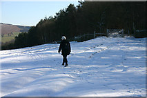 SK2468 : Above Chatsworth in the snow by Malcolm Neal