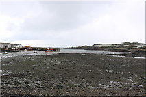 NX4736 : Isle of Whithorn Harbour by Billy McCrorie