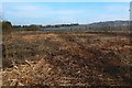 NS3977 : Recently-cleared land at Kilmalid by Lairich Rig