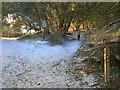 TQ1850 : Boxhill Road by Hugh Craddock