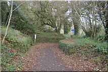 SX4975 : National Network Cycle Route 27 by N Chadwick
