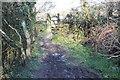 SN2351 : Gate on Wales Coastal Path by M J Roscoe