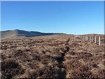 SJ0831 : Fenceline on the south ridge of Moel yr Ewig by Richard Law
