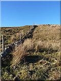 SJ0829 : Old field boundary by Richard Law