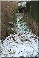 SX9064 : Former path off Crownhill Rise, Torquay by Derek Harper