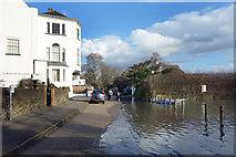 TQ1673 : High Tide, Riverside, Twickenham by Des Blenkinsopp
