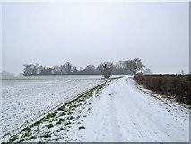 TL4352 : Near Rectory Farm in March by John Sutton