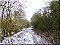 SJ8247 : High Lane on Gorsty Bank by Jonathan Hutchins