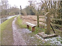SO8581 : County Boundery Stone by Gordon Griffiths