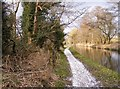 SO8581 : Towpath Scene by Gordon Griffiths