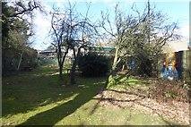 SE6250 : Derwent Provosts' Garden by DS Pugh